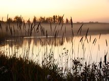 misty nad jezioro Fotografia Royalty Free