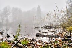 misty nad jezioro Fotografia Stock