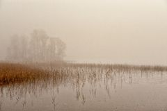 Misty November morning stock photo