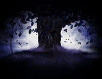 Misty Oak Tree