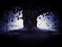 Misty oak tree. A big old oak tree in misty forest at night time Stock Images