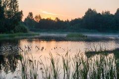 Misty orange lake Royalty Free Stock Images
