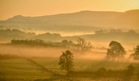 Misty orange sunrise with distant flock of wild geese Royalty Free Stock Photos