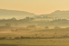 Misty orange sunrise with rural silhouettes royalty free stock photos