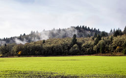 Misty Oregon hills over green field Stock Images