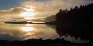 Misty Pacific kustsoluppgång Fotografering för Bildbyråer