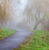 Misty path in autumn park Stock Image