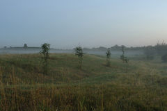 misty pola zdjęcia stock