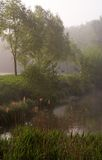 Misty pond stock photos