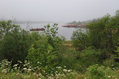 Misty pond Stock Image