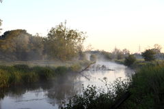 Misty River Royalty Free Stock Image