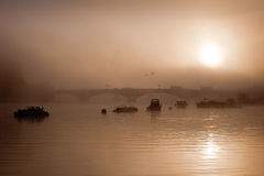 Misty river at dawn Royalty Free Stock Photo