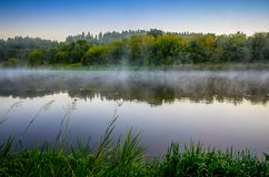 Misty river at dawn. Scenic landscape near forest stock images