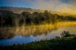 Misty river at dawn. Scenic landscape near forest royalty free stock image