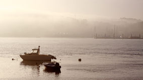 Misty river Douro Royalty Free Stock Photos