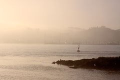 Misty river Douro Stock Images