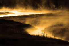 Misty River in Morning with Riverbank Forest Stock Photos