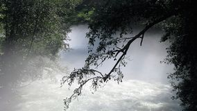 Misty river stock image