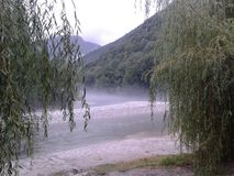 Misty river at Tolmin Royalty Free Stock Photography