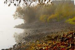 Misty Riverbank Fotografering för Bildbyråer