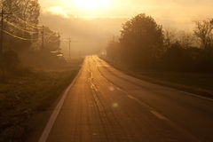 Misty road. The sun rising over a mist covered road royalty free stock images