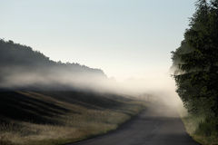 Misty road. A fog bank above the street Royalty Free Stock Image