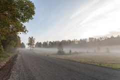 Misty road in the morning Royalty Free Stock Images