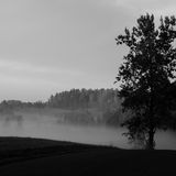 Misty road in the morning - monochrome Stock Photography