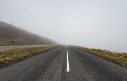 Misty Road Royalty Free Stock Photo