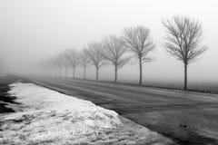 Misty Road Stock Photos