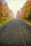 Misty Rural Road Through Autumn Trees - Vertical Stock Image