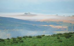 A misty scene in Northumberland Stock Image