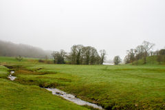 Misty Scenery in Wharfedale. Beautiful misty scenery and grey sky in Bolton Abbey, Wharfedale, North Yorkshire, UK Stock Image