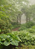 Misty shade garden with trellis Stock Images