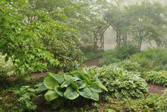 Misty Shade Garden With Trellis Stock Photo