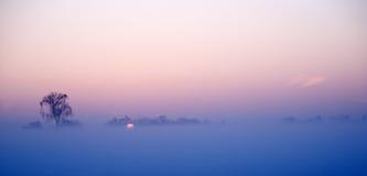 Misty snow landscape Royalty Free Stock Photo