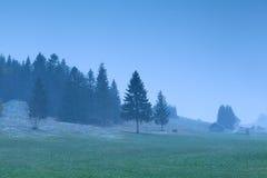 Misty snowy morning on alpine meadows Stock Photography