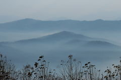 Misty soft blue mountain. Look like painting Royalty Free Stock Image