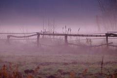 Misty spring landscape Royalty Free Stock Photo
