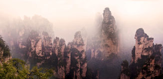 Misty steep mountain peaks in Zhangjiajie Royalty Free Stock Photo