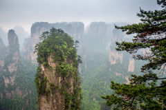 Misty steep mountain peaks - Zhangjiajie national park Royalty Free Stock Photography