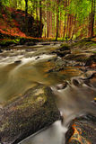 Misty Stream. Beatiful autumn misty stream. Long shutter speed water effect royalty free stock images