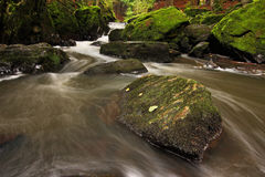 Misty Stream. Beatiful autumn misty stream. Long shutter speed water effect stock photo