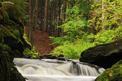 Misty Stream. Beatiful autumn misty stream. Long shutter speed water effect royalty free stock image