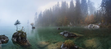 Misty summer morning on the Hintersee lake in Austrian Alps Royalty Free Stock Photography