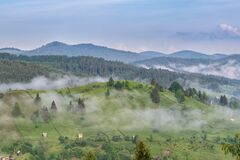 Free Misty Summer Morning Landscape Over Bucovina Village. Green Fild Meadows Covered In Mist With Fir Forest Mountains In Background A Stock Image - 212829751