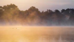 Misty summer morning on the river. Poland Stock Photos