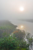 Misty summer morning sunrise on a marsh wetland. Brilliant & bright mid-summer sunrise on narrow passage of a lake.   Warm water & cooler air at daybreak create Royalty Free Stock Image