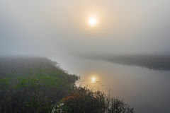 Misty summer morning sunrise on a marsh wetland. Brilliant & bright mid-summer sunrise on narrow passage of a lake.   Warm water & cooler air at daybreak create Stock Images