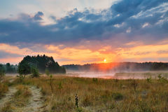 Misty summer sunrise. Foggy river in the morning. Misty morning Royalty Free Stock Image